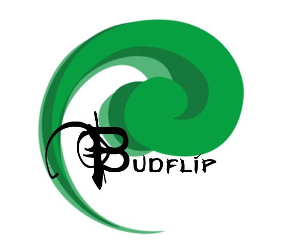 LogoBudflip